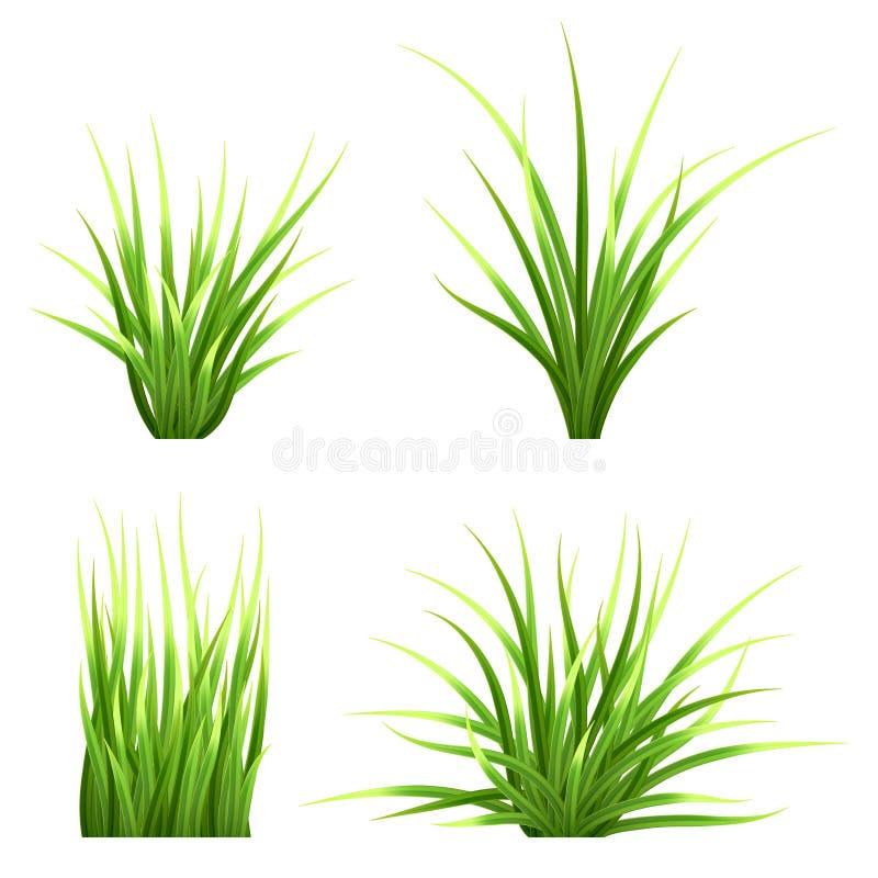 Ställ in realictic gräs för vektorn vektor illustrationer