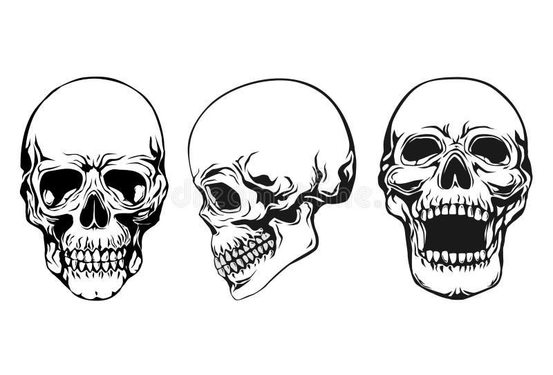 ställ in skallen royaltyfri illustrationer