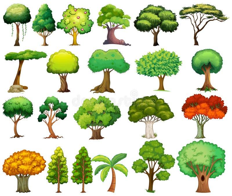 ställ in trees stock illustrationer