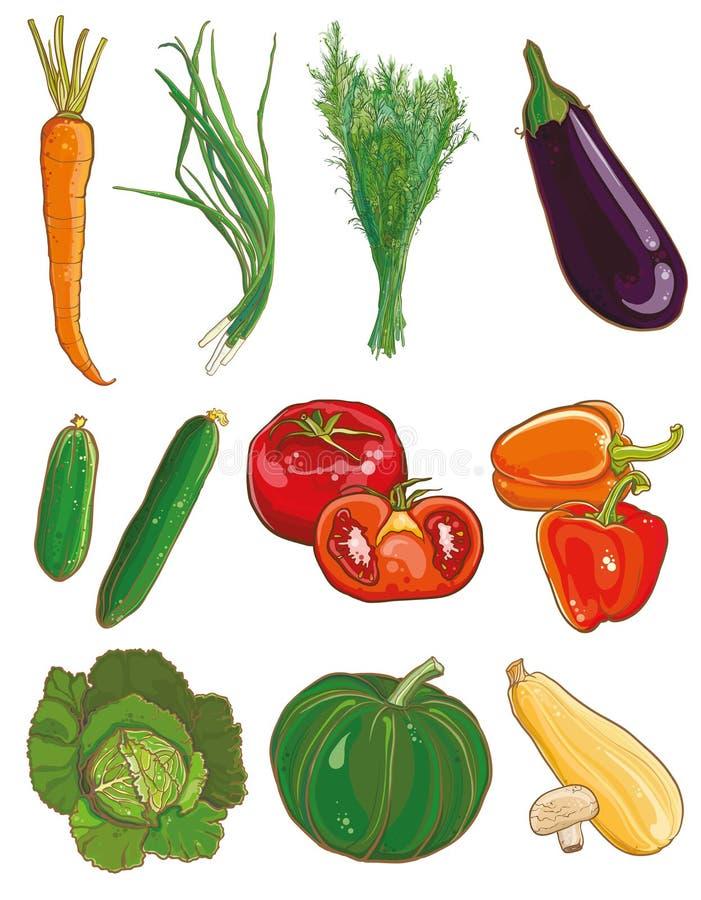 ställ in vektorgrönsaker traditionell italiensk pizza för kokkonstmatingredienser stock illustrationer