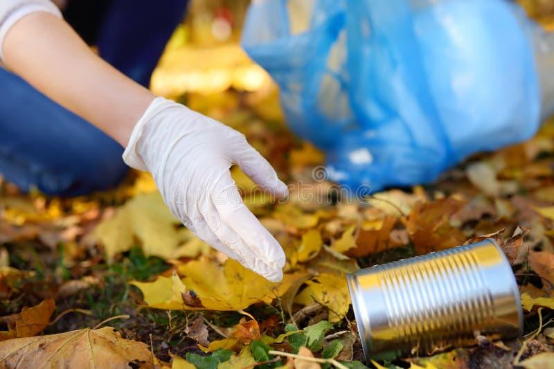 Ställa upp som frivillig plockning upp avskrädet och att sätta den i biologiskt nedbrytbar avfall-påse på det fria royaltyfri fotografi