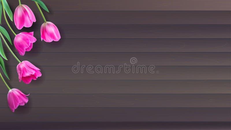 Ställde färgrika rosa tulpan in för realistisk vektor på träbakgrund från plankor Inte spår Mall med rosa tulpan för royaltyfri illustrationer