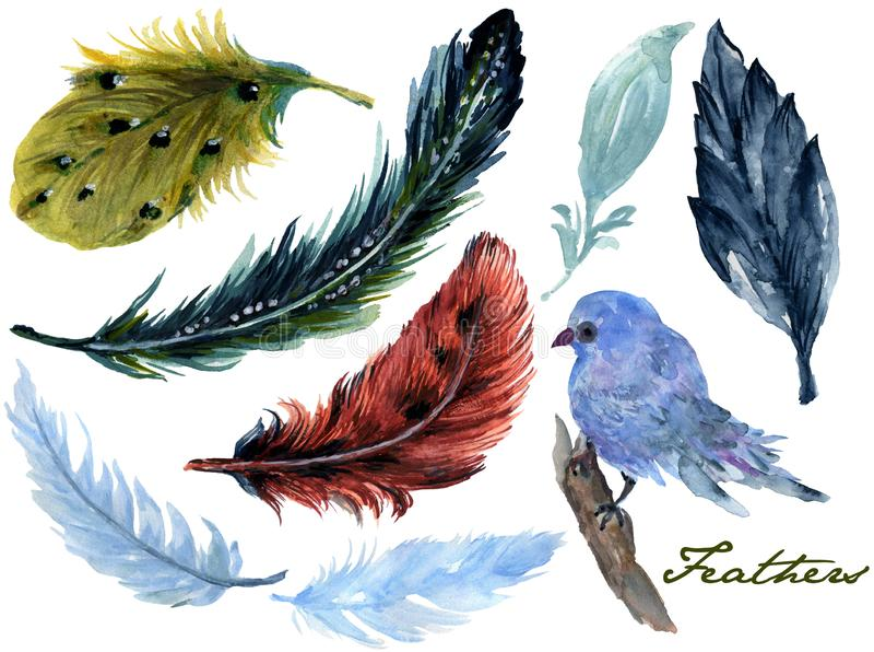 Ställde utdragna vattenfärgmålningar in den vibrerande fjärils- för handen och fågelfjädern fjädern för aquarellen för vingar för royaltyfri illustrationer