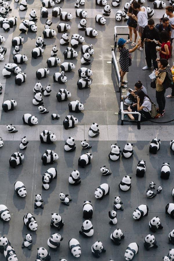 Stället för många pandaskulpturer på golvet är en konstutställning med åhörare, och besökare tar foto i Bangkok, Thailand arkivbilder