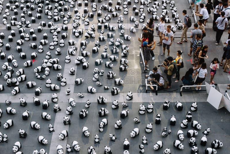 Stället för många pandaskulpturer på golvet är en konstutställning med åhörare, och besökare tar foto i Bangkok, Thailand arkivbild
