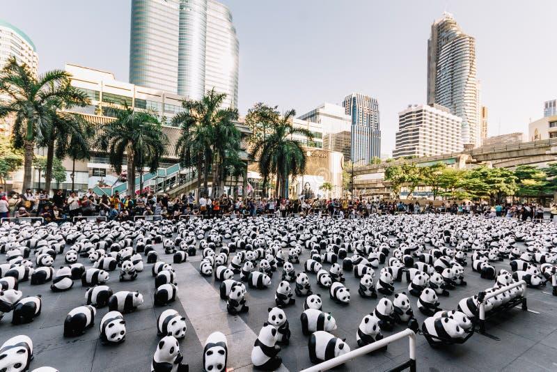 Stället för många pandaskulpturer på golvet är en konstutställning med åhörare, och besökare tar foto i Bangkok, Thailand royaltyfri foto