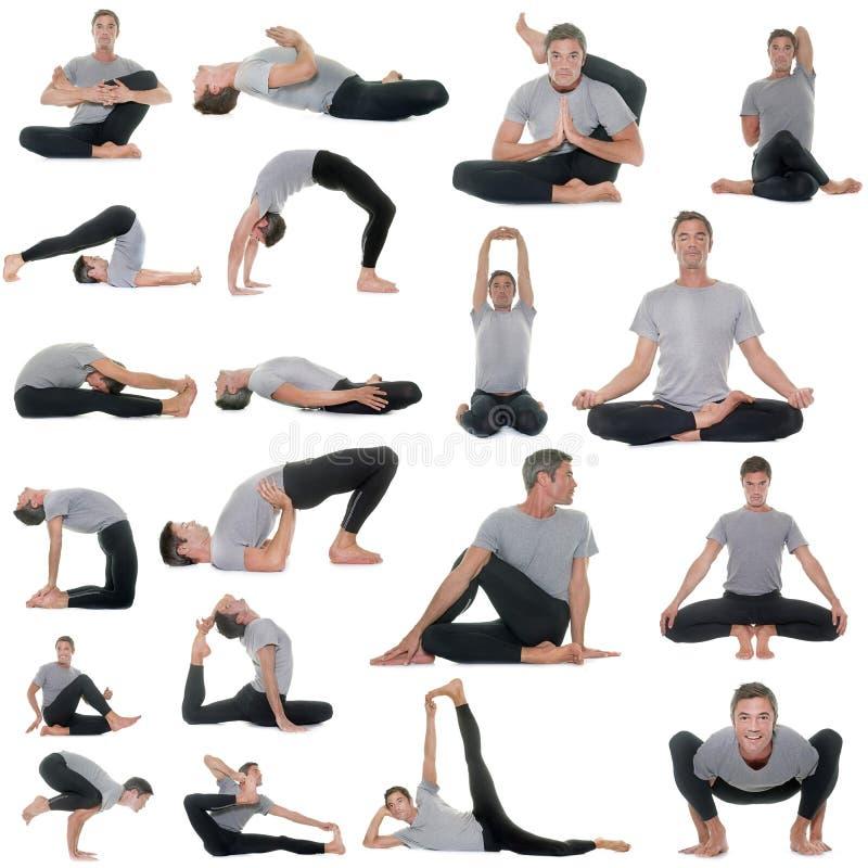 Ställingar av yoga royaltyfria bilder