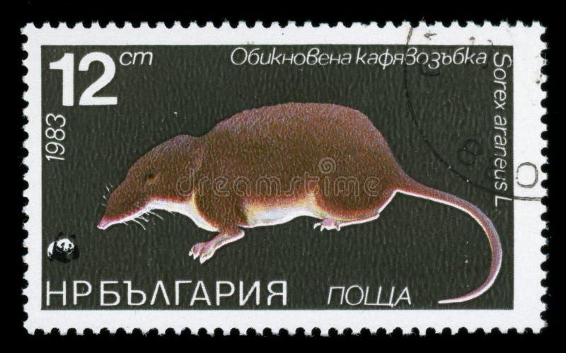 Stämpel för porto för ` för för Bulgarien`-flora och faunor, 1983 arkivbild