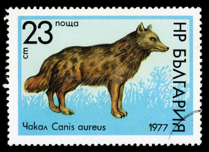Stämpel för porto för serie för ` för Bulgarien`-djurliv, 1977 arkivfoto