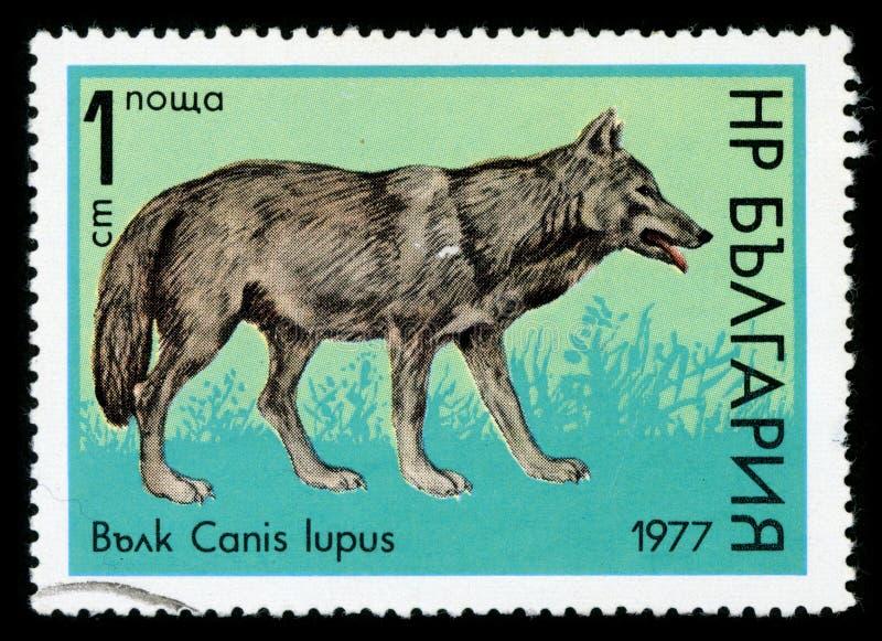 Stämpel för porto för serie för ` för Bulgarien`-djurliv, 1977 arkivfoton