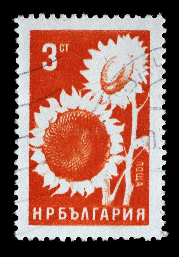 Stämpeln som skrivs ut i Bulgarien, visar solrosen arkivbild