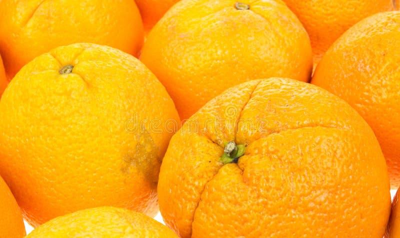 stäng den stora apelsinsikten royaltyfri fotografi