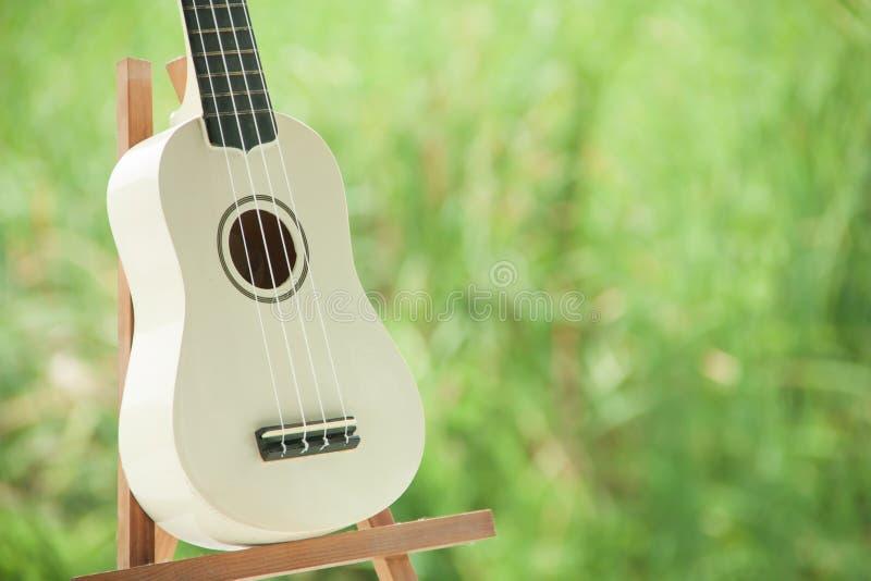 Stäng sig upp av den vita ukulelet på trädgårdbakgrund fotografering för bildbyråer