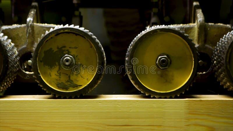 Stäng sig upp av den yrkesmässiga snickaren som maler träbräden i seminarium och massor av sågspåntillverkning av trä arkivbilder