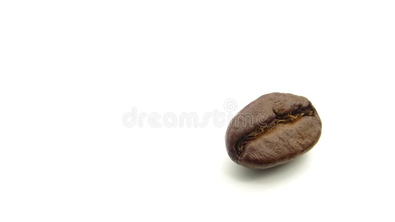 Stäng sig upp av en grillad kaffeböna på vit bakgrund arkivbilder