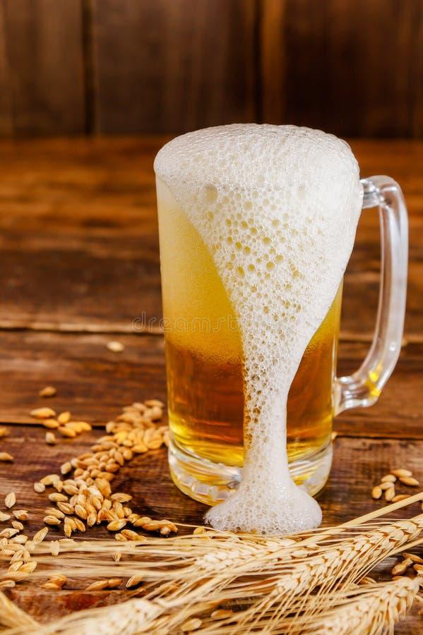 Stäng sig upp av ett exponeringsglas av ljust öl med skum, med en vetefilial och ett vete på en trätabell i en suddig bakgrund arkivfoton