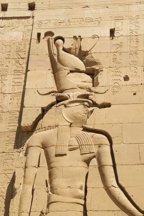 Stäng sig upp av fågelhuvudet av Horus fotografering för bildbyråer