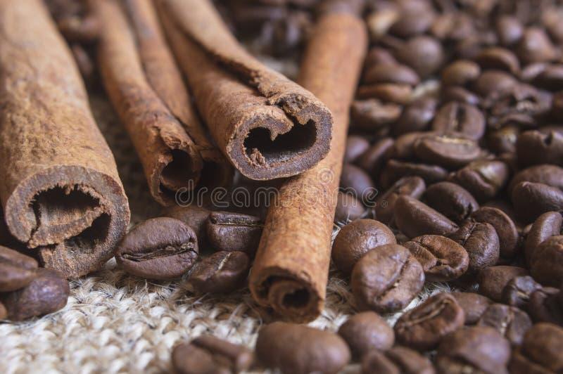 Stäng sig upp av fragnant kanelbruna pinnar med kaffebönor royaltyfri foto