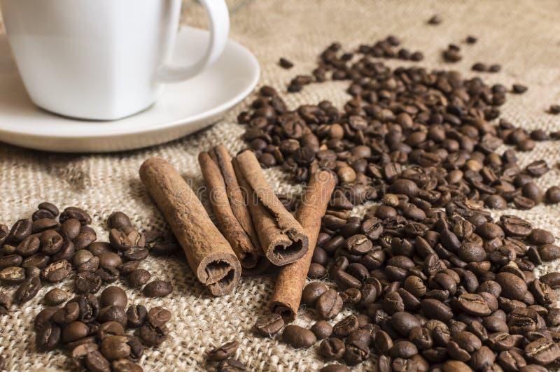 Stäng sig upp av fragnant kanelbruna pinnar med kaffebönor och koppnolla royaltyfria bilder