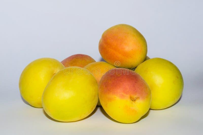 Stäng sig upp av gruppen av den nya organiska aprikons på en vit backgrpund fotografering för bildbyråer