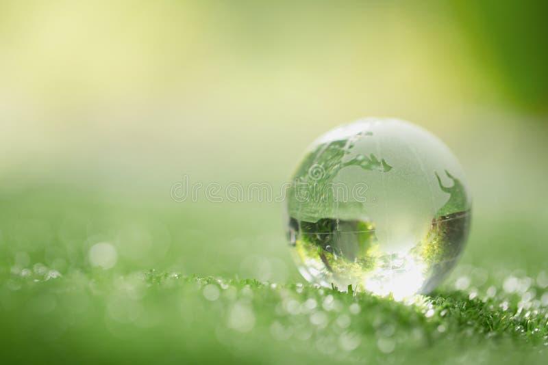 St?ng sig upp av kristalljordklotet som vilar p? gr?s i en skog arkivfoto