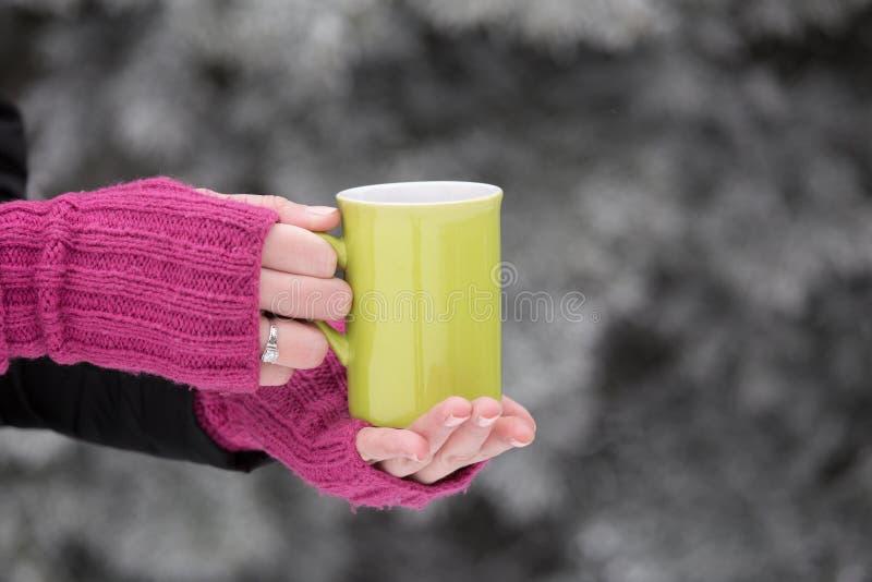 Stäng sig upp av kvinnahänder i woolen handskar som rymmer en kopp te royaltyfria foton
