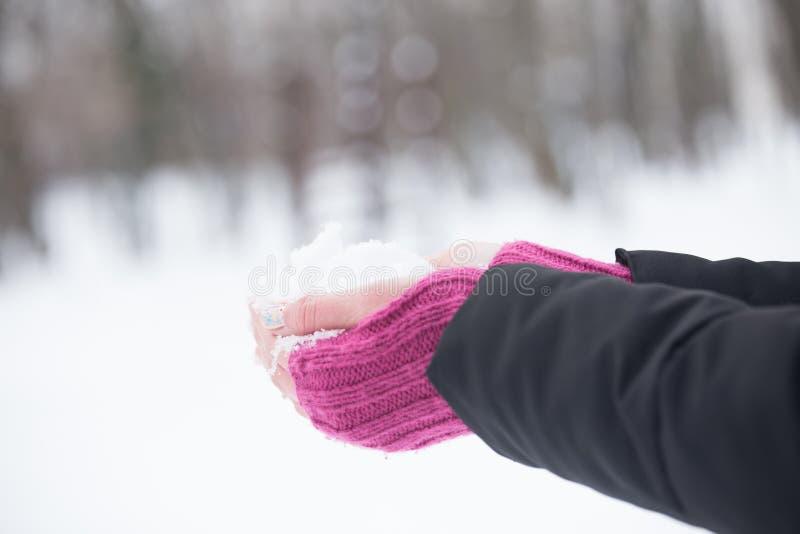 Stäng sig upp av kvinnahänder i woolen handskar som rymmer en snö ferie arkivbild