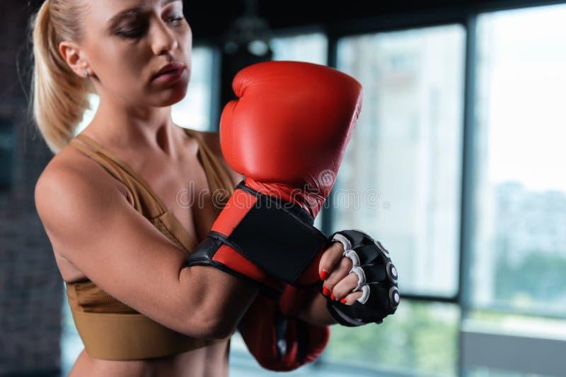 Stäng sig upp av ljusa röda boxninghandskar som bär vid den kvinnliga boxaren arkivfoton