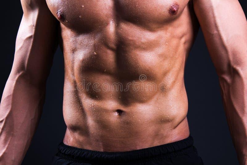 Stäng sig upp av muskulös manlig kropp över grå färger fotografering för bildbyråer