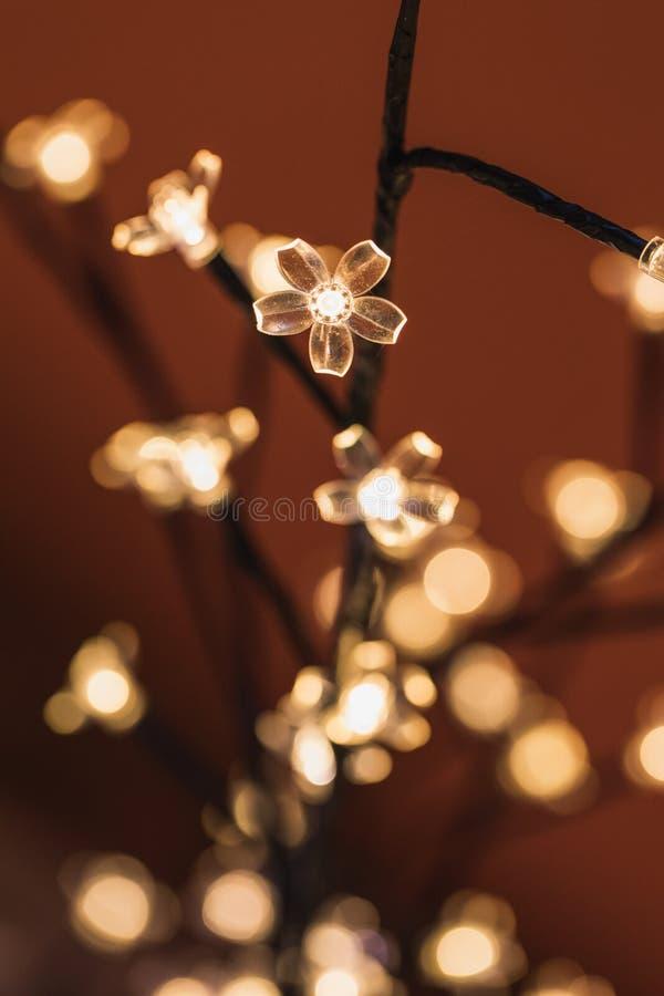 Stäng sig upp av oskarpa ljus på ett julträd royaltyfria bilder