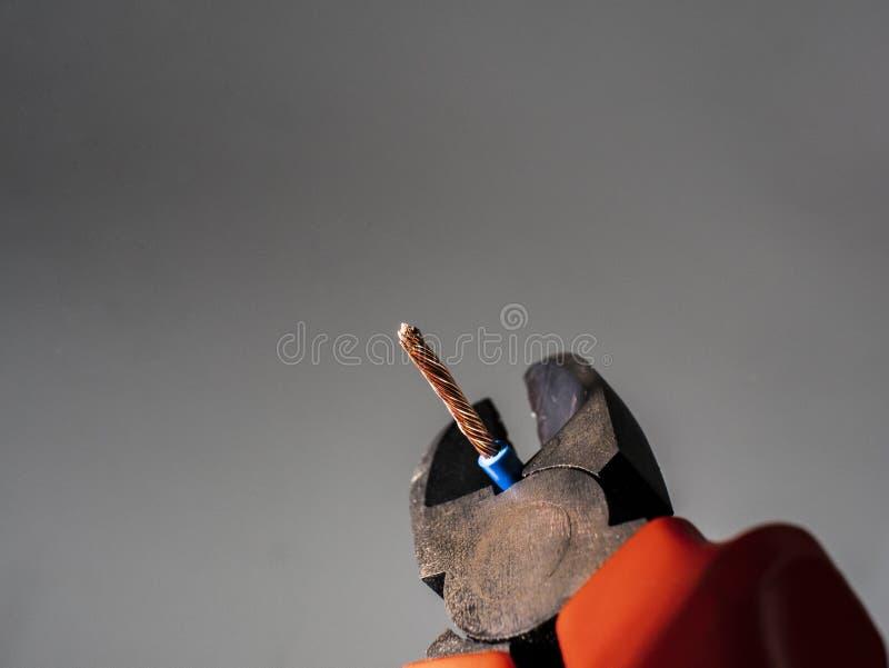 Stäng sig upp av röd plattång och blå vriden tråd på grå bakgrund Plattång som klipper kabel royaltyfri fotografi