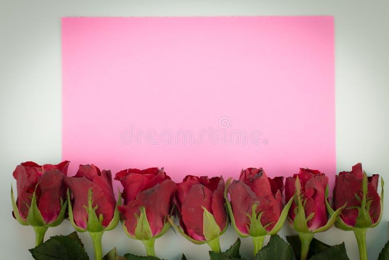 Stäng sig upp av röda rosor på en träbakgrund med det tomma meddelandetecknet för ditt text eller meddelande rosa hälsningkort me royaltyfri bild