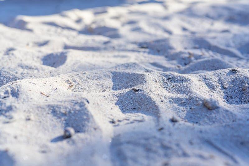 St?ng sig upp av sand p? en strand i sommar arkivbilder