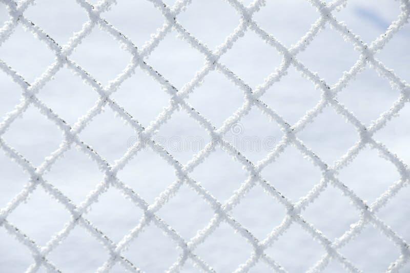Stäng sig upp av snö som lägger på fyrkanterna av ett trådlantgårdstaket med insnöad bakgrund - bild fotografering för bildbyråer