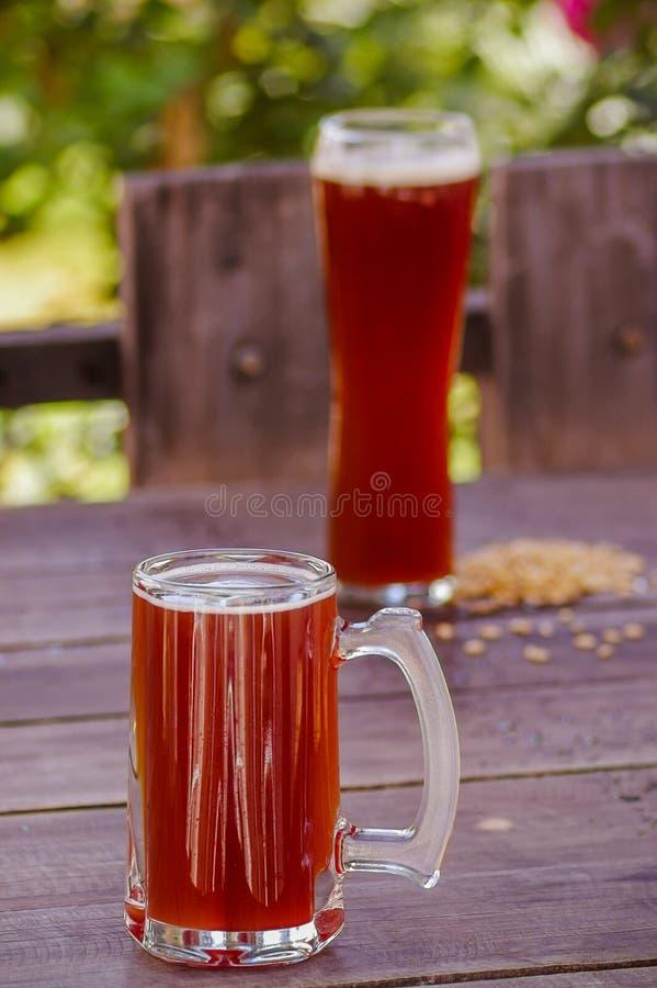 Stäng sig upp av två exponeringsglas av öl över en trätabell, med en suddig naturbakgrund arkivbild
