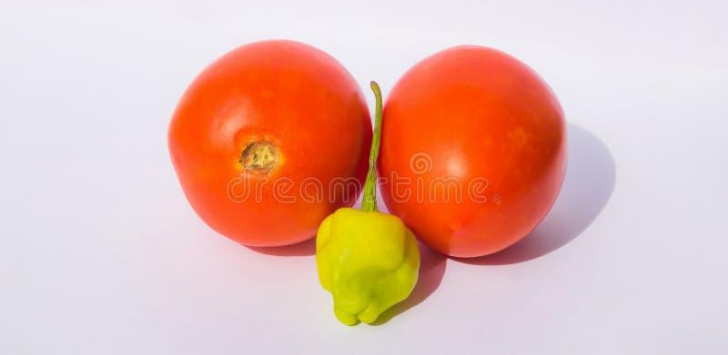 Stäng sig upp av två röda tomater och grön chilipeppar fotografering för bildbyråer