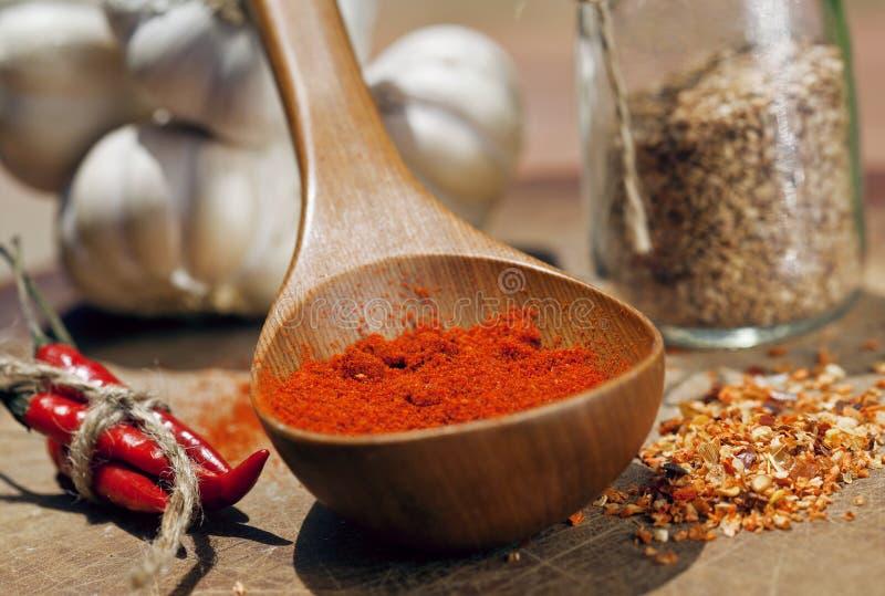 Stäng sig upp bilden av mycket glödheta chilipeppar och kryddigt, G royaltyfri foto