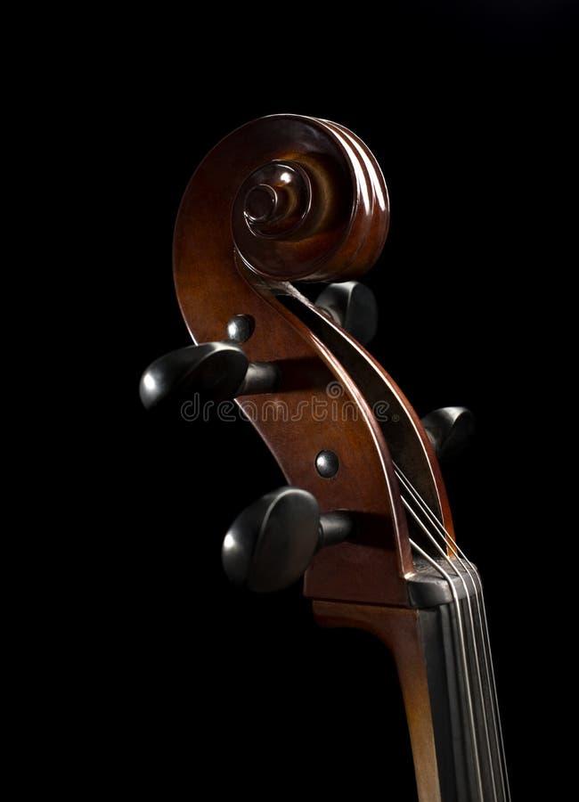 Stäng sig upp sikt av en snirkel på en violoncell fotografering för bildbyråer