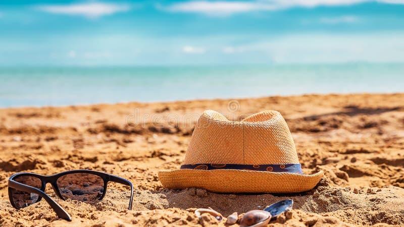 Stäng sig upp ståenden av att le pysen som spelar på stranden royaltyfri foto