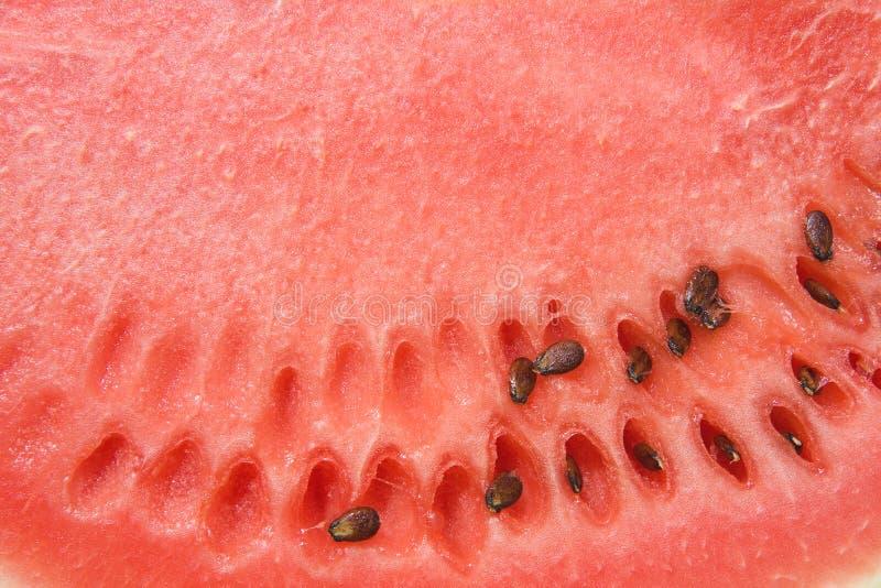 stäng sig upp vattenmelon arkivfoto
