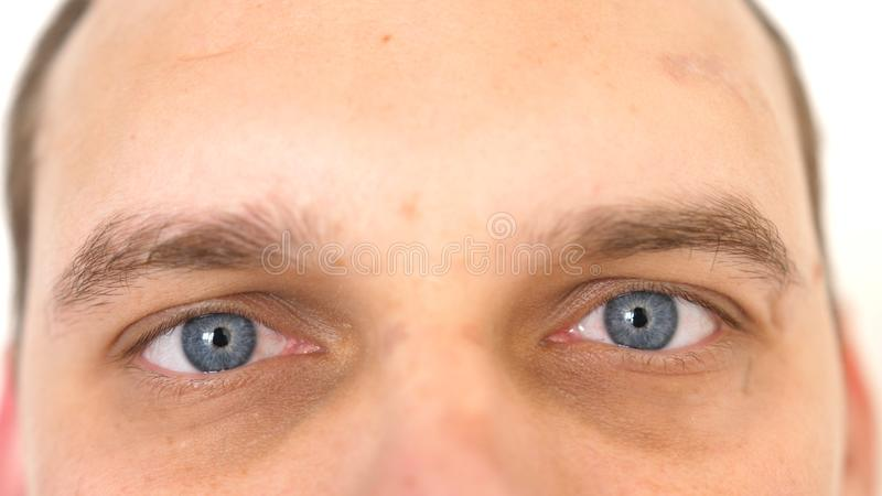 Stäng upp av manliga ögon Detalj av blåa ögon av en man som ser kameran arkivfoto