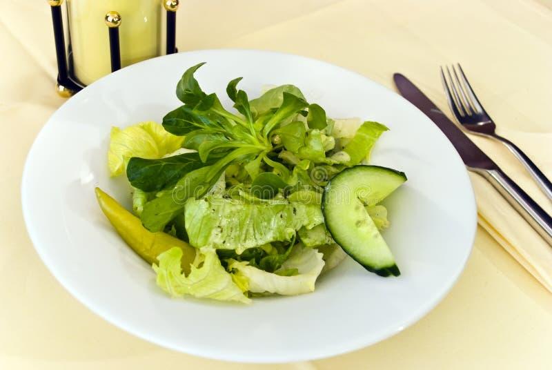 stäng upp gourmet- grekisk sallad royaltyfri foto