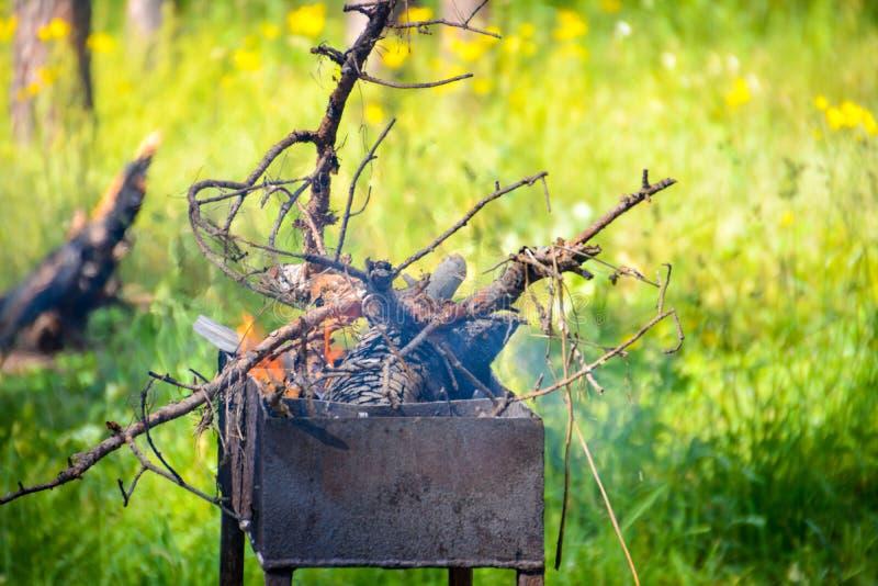 Stängd-upp lägereld i grillfest i skogbakgrund av brand och svart trä mörka gråa svarta vita kol på ljus brand inom mig royaltyfria foton