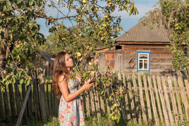 Stänger unga jungfru- ställningar för en kvinna nära det trädgårds- staketet framme av ett gammalt byhus och henne ögon i strålar arkivfoton