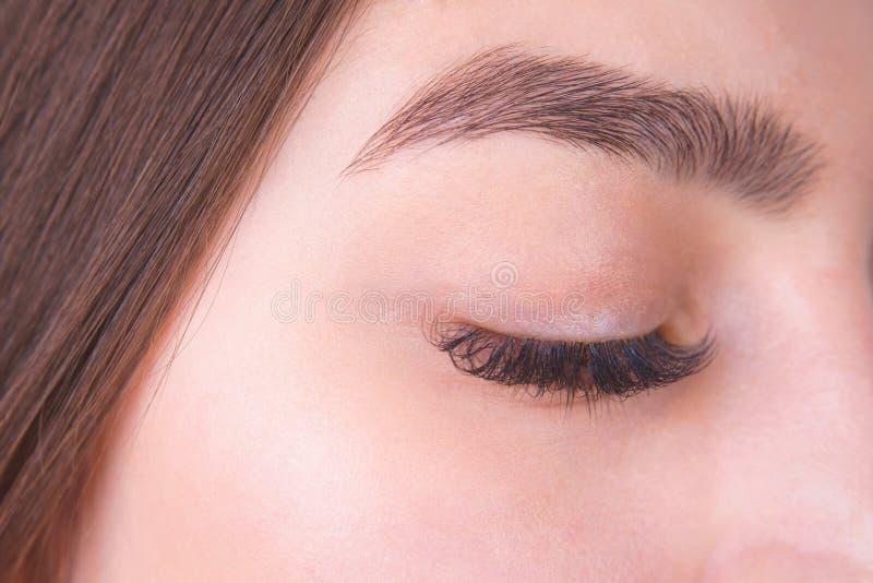 Stängt kvinnligt öga med långa ögonfrans och det härliga ögonbrynet, clo arkivfoto