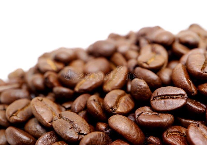Stängt upp högen av grillade kaffebönor som isoleras på vit bakgrund med fritt utrymme för text eller design arkivbild