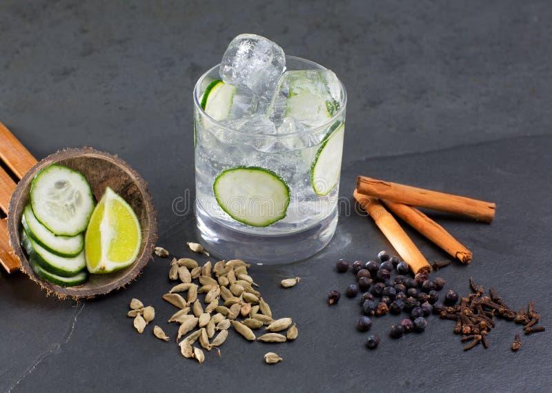 Stärkande coctail för gin med kardemumman för kryddnejlikor för lima gurkavanilj arkivbild