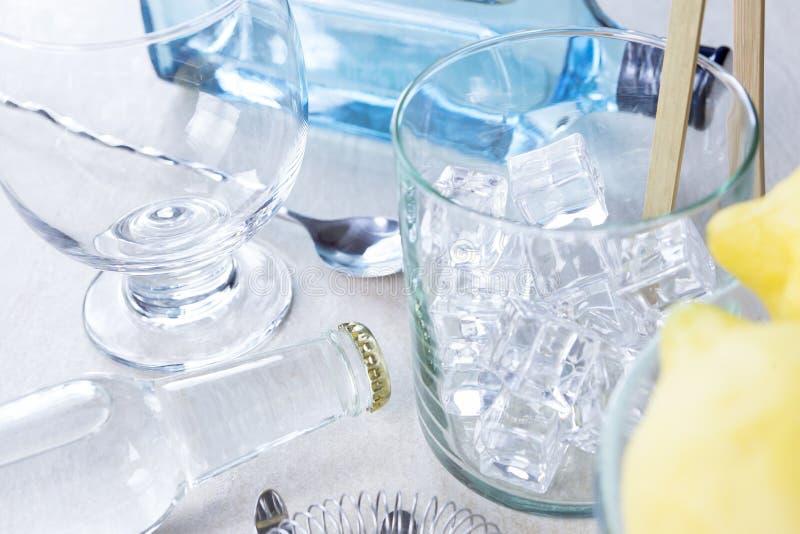 Stärkande coctailuppsättning för gin royaltyfri foto