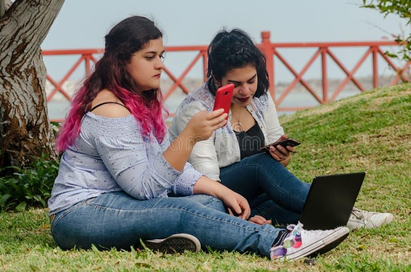 Stående av arbete för kvinna för peruansk nätt smileyframsida fett royaltyfri bild