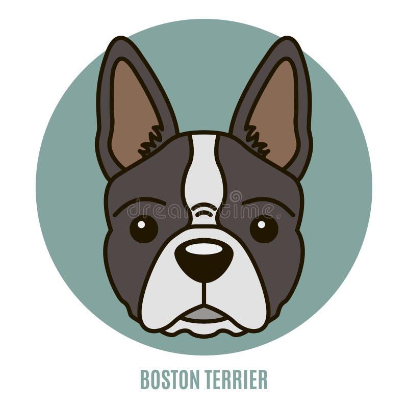Stående av Boston Terrier också vektor för coreldrawillustration stock illustrationer